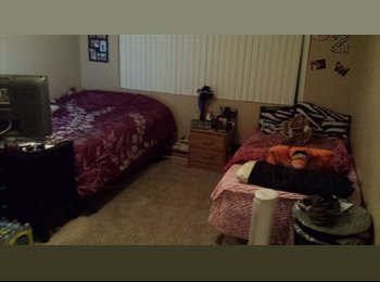 EasyRoommate US - Female roommate, shared room, near SDSU - College Grove, San Diego - $465