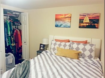 $1100 Room available in Clarendon
