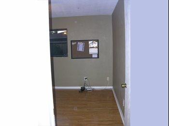 EasyRoommate US - Room for Rent - St Petersburg, St Petersburg - $600