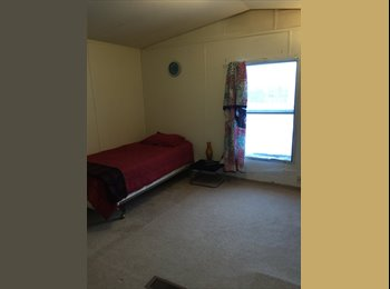 EasyRoommate US - Cute room to rent - Ann Arbor, Ann Arbor - $450