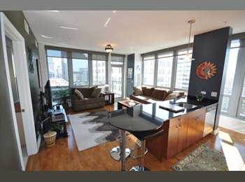 EasyRoommate US - Modern Condo- Looking for roommate (2nd bedroom) ( - Chicago, Chicago - $1250