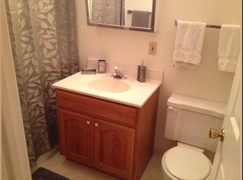 EasyRoommate US - 1.5 months rent free for 1BR apt - Rockford, Rockford - $525