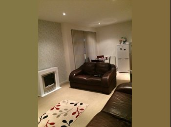 EasyRoommate UK - Fantastic double room for professional female - Old Aberdeen, Aberdeen - £560