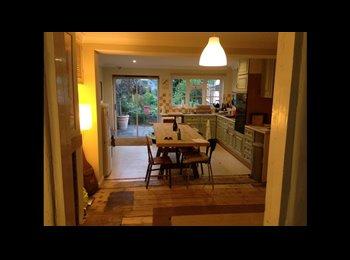 EasyRoommate UK - House share little terraced house, central Alton - Alton, East Hampshire and Havant - £400