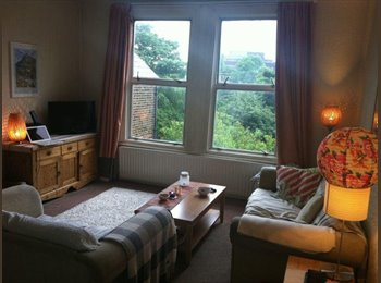 EasyRoommate UK - Beautiful, spacious room with private roof terrace - London, London - £690
