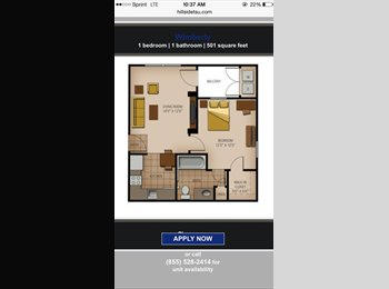 EasyRoommate US - available now-1 bedroom  - San Marcos, San Marcos - $825