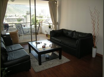 Roommate Wanted for Apartment in Providencia :)