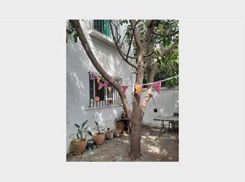 rooms in  (Bellavista neighborhood)