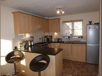 EasyRoommate UK - Spacious room in a very nice house and quiet area - Grange Farm, Milton Keynes - £500