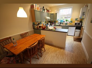 Lovely professional property in quiet street