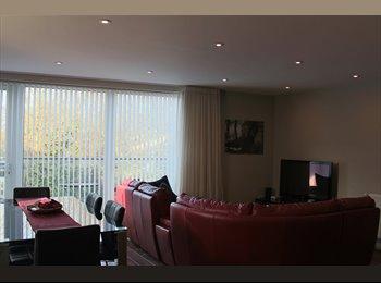 EasyRoommate UK - Edgware - Brand New Flat, Double Room Available! - Edgware, London - £805