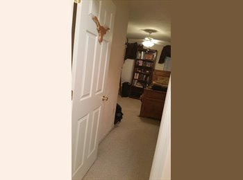 two rooms up for rent