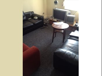 EasyRoommate UK - 62 Bedford Place Double room to let for rent - Southampton, Southampton - £325