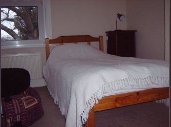 EasyRoommate UK - Small Clean Room in Tidy House - Newbury, Newbury - £400