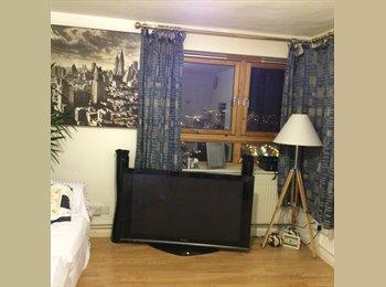 EasyRoommate UK - Clean Apartment Fully Furnished - Kelham Island, Sheffield - £360
