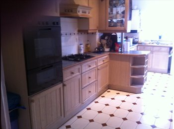 EasyRoommate UK - *LARGE DOUBLE ROOM AVAILABLE* - Tottenham, London - £450