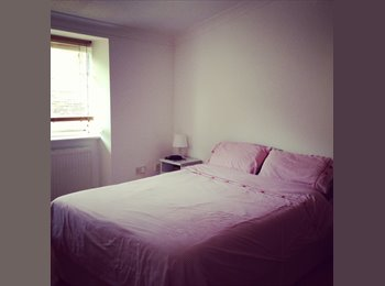 EasyRoommate UK - beautiful double room for professional - Archway, London - £900