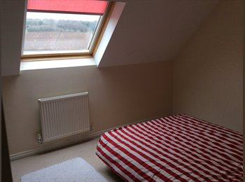 EasyRoommate UK - Home from home in Bristol - Long Ashton, Bristol - £450