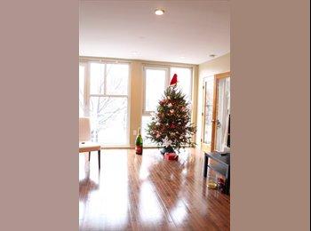 Park Slope beautiful apartment - $1150