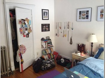 Roommate Needed for Great Brookline Apartment