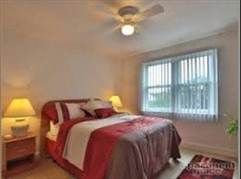 EasyRoommate US - Graduate/Professional female roommate wanted - Northeastern, Baltimore - $716