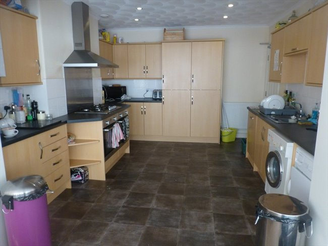 Beautiful Rooms to let - Exeter - Image 1