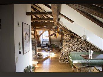 Zimmer in Halleiner Altstadt mit Bergblick