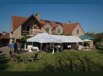 Appartager BE - Magnifique Collocation Villa-Jardin-Piscine - Auderghem-Oudergem, Bruxelles-Brussel - €550