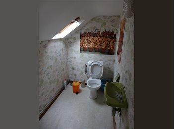 Appartager BE - kot chez l'habitant - Namur, Namur-Namen - €275