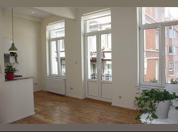Appartager BE - Beautiful renovated apartment - le Quartier Européen (Léopold, Schuman), Bruxelles-Brussel - €750