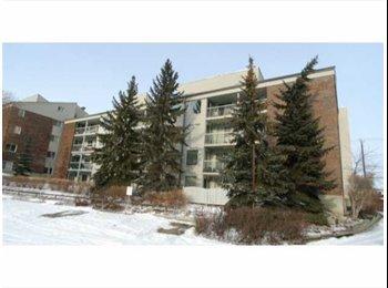 Looking roomate(s) in South Edmonton