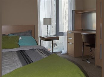 Sublet at Luxe Phase II May- Aug 1-4 rooms