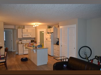 EasyRoommate CA - Roommate to share condo - Airdrie, Calgary - $775