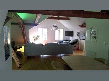 EasyWG CH - Mitbewohner/in gesucht - Uster, Zürich / Zurich - CHF1200