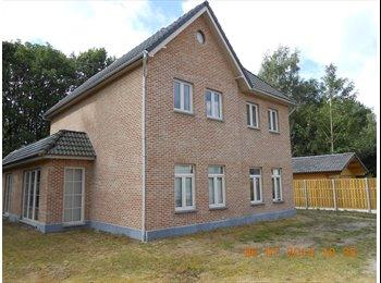 EasyKot EK - Kamer te huur voor korte of lange periode. - Overig Antwerpen-Anvers omgeving, Antwerpen-Anvers - €500