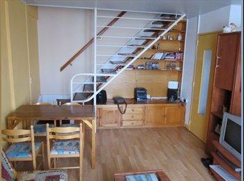 Appartager FR - Duplex lumineux proche centre ville - Dijon, Dijon - €300
