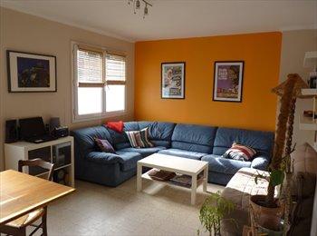 Chambre meublée colocation quartier Carnot