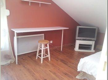 Appartager FR - Loue 2 chambres - Montauban, Montauban - €250