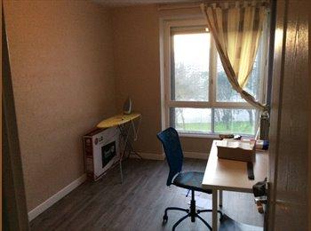 Appartager FR - 1 chambre de libre pour locataire - Brest, Brest - €280