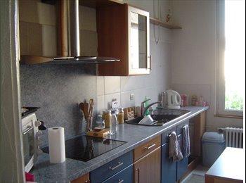 Appartager FR - Appart spacieux rue de Bâle - Mulhouse, Mulhouse - €290