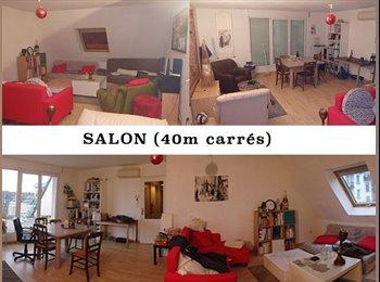 Appartager FR - Coloc proche centre ville - la Gare, Strasbourg - €310