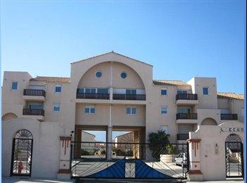 Appartager FR - Chambre dans appartement lumineux Quartier vert - Saint Cyprien, Toulouse - €380
