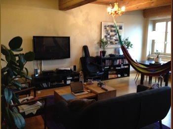 Appartager FR - chambre a louer - 1er Arrondissement, Lyon - €850