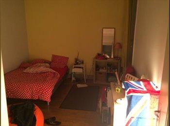Appartager FR - Colocation pour une personne - 2ème Arrondissement, Lyon - €550