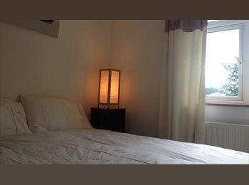Room to let. Harolds Cross D6