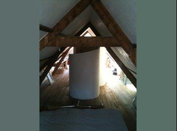 EasyKamer NL - Nice attic apartment with private shower & toilet - Kralingen-Oost, Rotterdam - €600