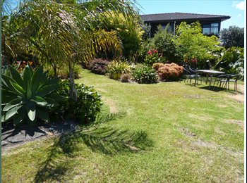 NZ - Semi self contained downstairs flat - Massey, Auckland - $250