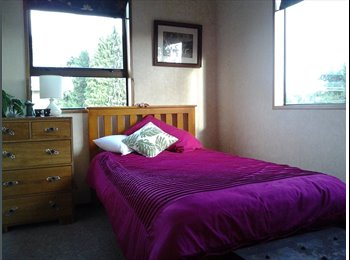 NZ - house share with owner - Gate Pa, Tauranga - $140