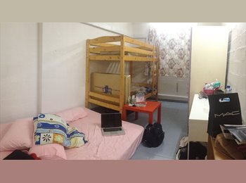 Need female to share the room
