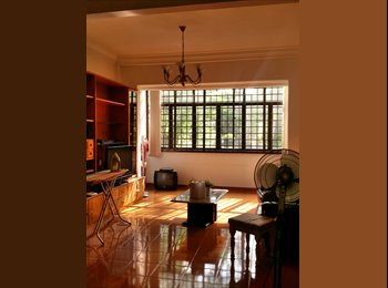 EasyRoommate SG - Flat to share near Orchard/Somerset - Orchard, Singapore - $1200